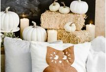Fall Home Favorites / All things fall for the home!