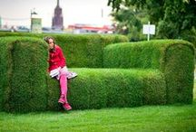 Unusual Lawns / The unusual and interesting in lawn and gardening