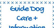 Guide Dogs + Information / All things Guide Dogs. Organisation, Living with a Guide Dog etc