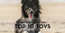 Dog Toys and Games / We scour, explore and review only the best doggy games and toys for your furry friends.