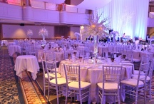 Passionate Purples / Whether it is a corporate event, a wedding or a small gathering- it should be beautiful! Check out all of these event ideas, we will rent you the products to create these dream looks! If we can't we will direct you the person who can!    www.eventsource.net