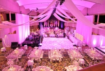 Radiant Reds/ Pretty Pinks / Whether it is a corporate event, a wedding or a small gathering- it should be beautiful! Check out all of these event ideas, we will rent you the products to create these dream looks! If we can't we will direct you the person who can!    www.eventsource.net