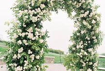 """Ceremony Ideas / The perfect setting to say """"I Do"""""""