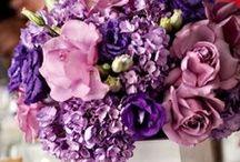 Wedding :) / by Kristen Reda