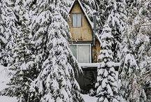 WINTER / Feeling wintery.