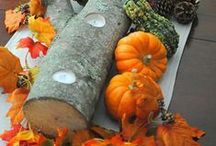 Table Decorations {Nature Inspired} / Set the table using decorations inspired by #Nature.