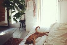 a cozy casa. / by Tanelle Olson