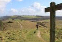 South Downs National Park / Glorious views, wonderful walks, an ancient rural heritage.