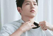 ⭕️ Song Joong Ki