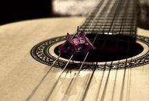 ⭕️ guitar
