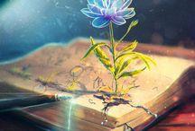 綺麗なイラスト / Beautiful illustration