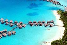 Bora Bora ~ Tahiti ❤ Honeymoon / Bora Bora! Das Paradies und Traumziel für Viele! Ob als Reise deines Lebens oder als Honeymoon Destinationen Bora Bora wird dich in seinen Bann ziehen! Ich zeige dir die schönsten Bilder dieser Traum Insel und verrate dir die besten Unterkünfte in der Südsee! Lass dich verzaubern und vielleicht geht ja deine nächste Reise nach Französisch Polynesien?