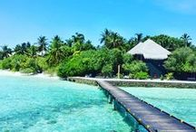Maldives Island ✈Malediven Urlaub / Über 1000 Inseln gibt es auf den Malediven! Da fällt einem die Entscheidung nicht leicht die perfekte Insel für seinen Urlaub oder als Honeymoon Destination auszusuchen! Ich zeige dir hier die besten Insider Tipps für deine Reise auf die Malediven! Ob verlassen Strände oder das perfekte Hotel hier wirst du bestimmt fündig!