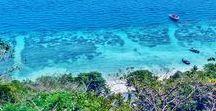Thailand || Travel || Reise / Ob Ko Phi Phi Island oder nach Bangkok, die Entscheidung ist nicht leicht! Doch meine Reise Tipps helfen dir den passenden Ort in Thailand für dich zu finden! Lass dich inspirieren und hole dir Tipps zu den schönsten Stränden, Hotels & Attraktionen von Thailand!