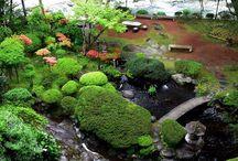 Japanese Garden Ideas / by Shinrin Art