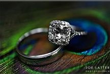 Wedding Rings / A few of the over 500 weddings rings I've photographed