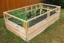 Gardening & Planting / Tips, inspiration and eco-friendly gardening ideas. / by Shinrin Art