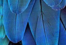 Blaue Dinge
