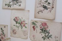 Paper passion / letters, mail, journals, discovery, sharing, tapes, prints, pretty cards & more