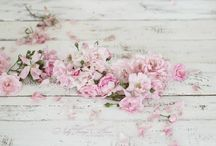 Delicate pink / a worn in vintage cloth, a pale wash of colour, the delicacy of blossom ready to fall to the dew strewn grass beneath, the silkyness of a rose's petals. Pink... it is the reflection of your innermost heart
