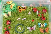 Pre-K ~ Insects