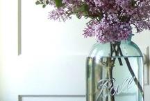flowers, Flowers, flowers / by Melanie Patterson