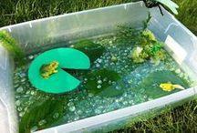 Pre-K ~ Frog / Pond