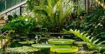 Botanical Gardens Wedding Venues + Style Inspiration / On our beautiful botanical wedding board you'll find everything you need to host the perfect leafy wedding; we've got dream wedding and reception spaces. And to top it off there's a host of style inspiration to whet your appetite.