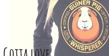 EU: Gotta Love Guinea Pigs! Guinea Pig shirts, clothing and gift ideas! / Guinea Pig t-shirts, hoodies, clothing and gift ideas for every guinea pig lover out there, by Waldogs, with international shipping! Guinea Pig Shirt. Guineapig hoodie. Guinea Pig gift ideas. #guineapig #guineapigs #guineapiglady #marsu #marsvin  EU: https://muumau.spreadshirt.fi  USA: https://waldogs.spreadshirt.com