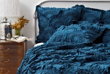 Bedroom Ideas / I would like to be surrounded by sunshine and teal. / by Marisol Mendoza