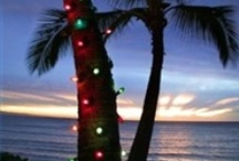 """Mele Kalikimaka - Hawaii For The Holidays / Who says you need snow for the holidays? Spend your Christmas/Hanukkah/New Years in Hawaii!!! We would like to make this the largest board on Pinterest dedicated to spending the holidays in Hawaii. If you would like to be a contributor, please let us know via http://www.facebook.com/LandingStanding. Please pin hotel deals, events, recipes, and anything in the spirit of the *Hawaiian* holidays to the board. Be sure to turn off your notifications for """"group boards"""" to minimize emails."""