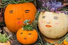 It's Fall, Y'all! / Halloween, Thanksgiving and fall decor / by Kimberly Morris