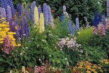 Gardens Vol. 2