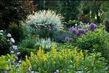 Gardens Vol. 6 / Gardens that inspire me.