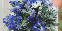 HL- Wedding / Flowers: -Blue or White Hydrangeas -Blue Thistle -White Roses and/or Lisianthus -White Stock  Foliage:  -Salal -Seeded or Silver Dollar Eucalyptus   Use Blue Thistle in all of the arrangements to add that wild blue rustic feel