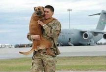 | NOTABLE PETS | / Pets are our heroes, our companions and best friends. Collars off to these marvelous creatures.