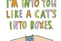 Meow You're Talking / by Isabel Johnson