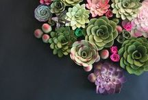 Gardening / by Pamela Kudlacek