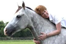 Faith and Horses