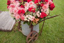 Flowers / by Marie Sullivan