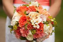 All things wedding / weddings, bridal makeup, gowns, brides, bridal hairstyles, flower girls