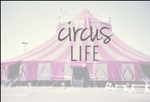 Circus Life / day dreamin' about life in the circus / by Positively Present