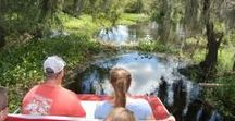 Sarasota, Florida Tours / There are a myriad of options for exploring and observing the Sarasota, Florida.