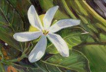 My paintings of Hawaiian flowers / My artwork