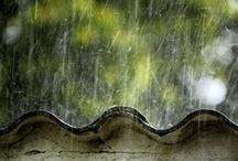 glorious rain / by Rachel Hope