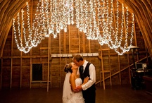 Weddings--Receptions /  Weddings, & Receptions
