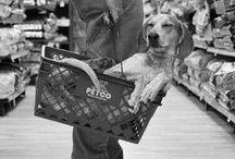 POOPERS / Dog goodies
