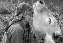 BE A BETTER EARTHLING / Veganism - Veggie Heads - Fair Trade - All That Hippy Stuff