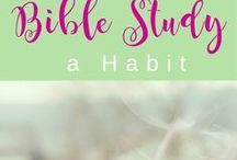 Bible Study / Find many resources and helps for your personal or group Bible studies here!