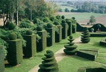 Classic Gardens / by Kate Thompson